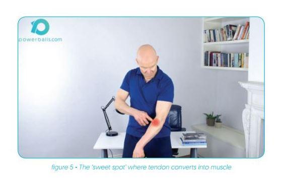 tennis elbow exercise, powerball, powerball exercise